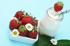 Free Strawberries Yogurt Royalty Free Stock Photography - 5400117
