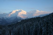 Free Mont Blanc And Evening Forest Royalty Free Stock Photography - 5401137