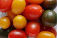 Free Colorful Tomatoes Background Royalty Free Stock Photos - 5401568