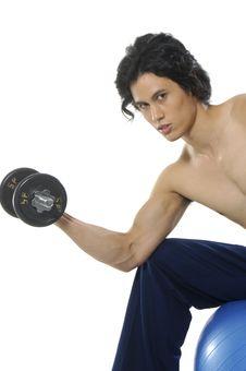 Free Bodybuilding Royalty Free Stock Photo - 5403875