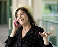 Free Modern Businesswoman On A Cell Phone Stock Photos - 5404653
