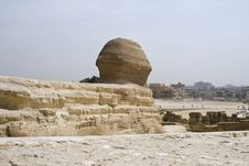 Back Of The Sphinx Head Stock Photography