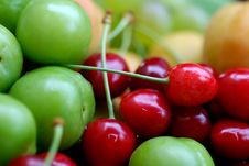 Sour Cherries And Plums Stock Images
