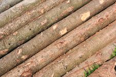 Log Wood Stock Image