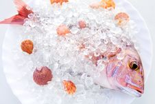 Free Ice Dorado Royalty Free Stock Image - 5406866