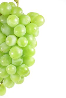 Free White Grapes Royalty Free Stock Images - 5408789