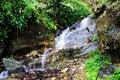 Free Waterfall Stream Stock Image - 5413671