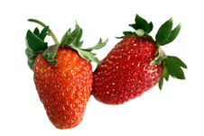 Free Strawberry Isolated Royalty Free Stock Photography - 5411417