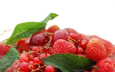 Free Bright Red Berries With Green Leaf Royalty Free Stock Image - 5412366