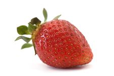 Free Fresh  Strawberry Royalty Free Stock Images - 5412999