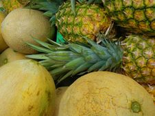 Free Cantaloupes And Pineapples Royalty Free Stock Photos - 5413408