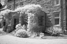 Free The Infrared Image Of A Church Ground Royalty Free Stock Photography - 5413477
