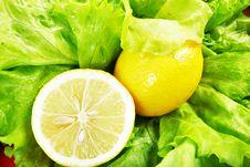 Free Half Of A Lemon Stock Photography - 5413832