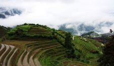 Free Rice Terraces Stock Photos - 5414323