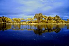 Reflection Of Tree And Sky In The Lake Royalty Free Stock Photo