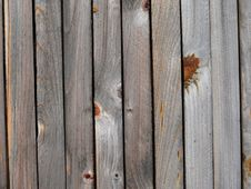 Wooden Fence. Texture. Royalty Free Stock Images