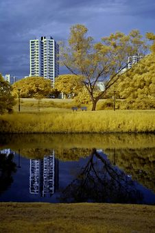 Reflection Of Building And Tree In The Lake Royalty Free Stock Photography