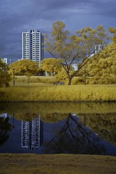 Reflection Of Building And Tree In The Lake Stock Photos