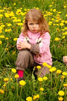 Free Pretty Girl In Dandelions Stock Photos - 5415623