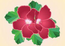 Free Crimson Flower Stock Photo - 5416210