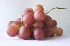 Free Grapes Stock Photo - 5417890