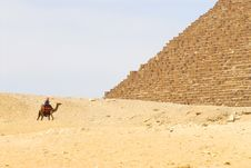 Free Beduin At Pyramids Stock Image - 5418501