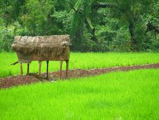 Storage Hut In The Field Stock Image