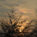 Free Cloud Iridescence Stock Photo - 5420070