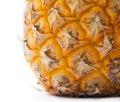 Free Baby Pineapple Detail Stock Photo - 5425360