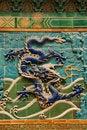 Free Dragon Wall Royalty Free Stock Photography - 5428077