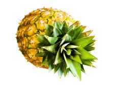 Free Pineapple On White Stock Photo - 5420200