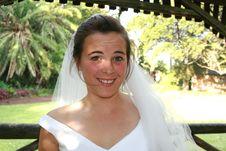 Free Surprised Bride Royalty Free Stock Image - 5420786