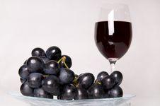 Free Vine. Royalty Free Stock Photography - 5421937