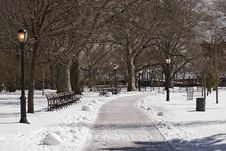 Free Small Park In The Winter Royalty Free Stock Photography - 5422687