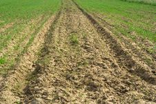 Free Ploughed Field Stock Photo - 5422740