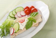 Free Dietetic Sandwich Stock Images - 5422934
