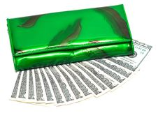 Free Green Wallet With Money Stock Images - 5423024
