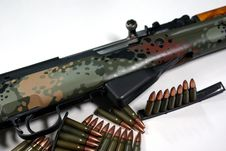 Free Military Rifle And Ammunition Royalty Free Stock Photos - 5423308