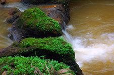 Free Water Fallse. Royalty Free Stock Photography - 5423547