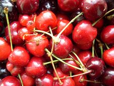 Free Cherries Stock Image - 5424301