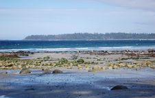 Free Beach View In Florencia Bay Royalty Free Stock Photo - 5424595