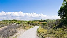 Free Path In Dunes Royalty Free Stock Images - 5424619
