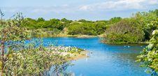 Free Beautiful Lake Royalty Free Stock Photo - 5424665