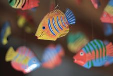 Free Flying Fishes Stock Images - 5427004