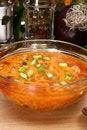 Free Chicken Tortilla Soup Royalty Free Stock Photos - 5439228