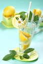 Free Glass Of Fresh Water With Lemon Royalty Free Stock Photos - 5439818