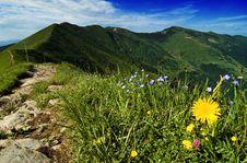 Mountains In Slovakia Stock Image