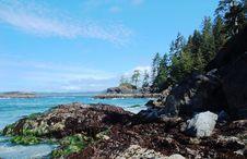Free Seashore Stock Image - 5431191