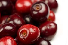 Free Close-up Of Fresh Cherry Stock Photography - 5431442