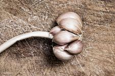Free Garlic. Royalty Free Stock Photos - 5431638
